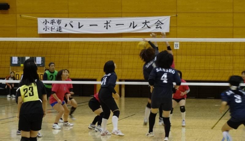 スポーツと実りと芸術の秋_f0059673_234036100.jpg