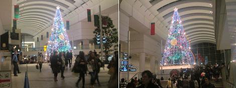 新嘗祭とクリスマス_d0183174_935062.jpg