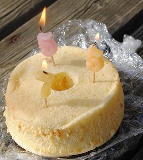 京のお山で誕生日ランラン♪_d0003977_12505749.jpg