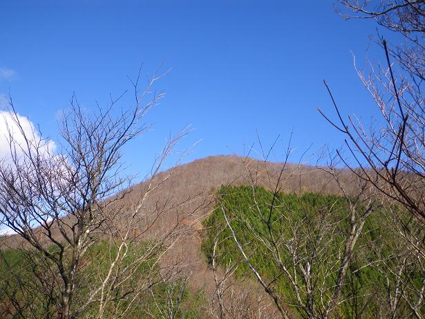 二口山塊の里山を歩く (三森山から桐ノ目山まで) ~ 2012年11月21日_f0170180_177829.jpg