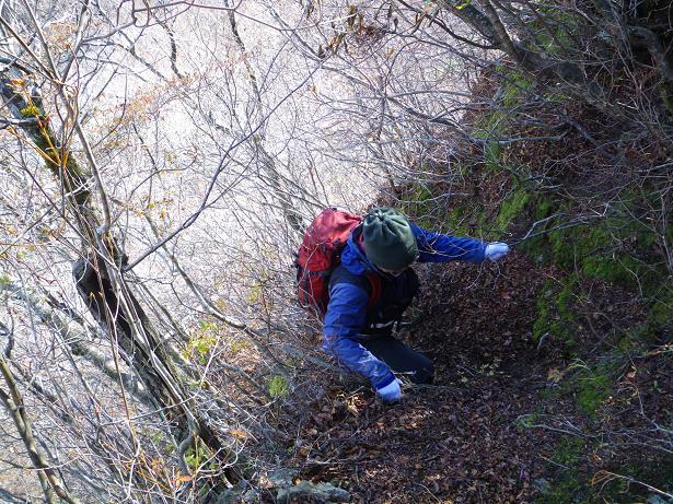 二口山塊の里山を歩く (三森山から桐ノ目山まで) ~ 2012年11月21日_f0170180_1911281.jpg