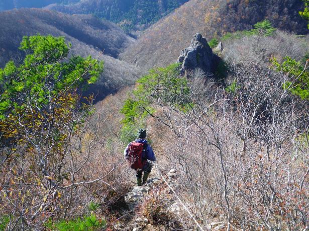 二口山塊の里山を歩く (三森山から桐ノ目山まで) ~ 2012年11月21日_f0170180_1945858.jpg
