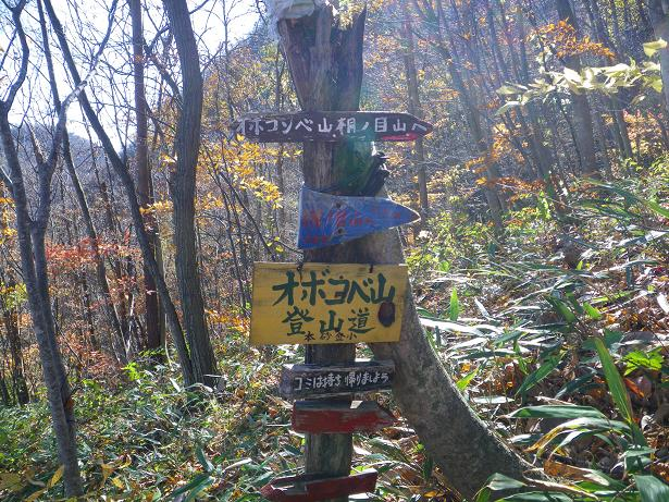 二口山塊の里山を歩く (三森山から桐ノ目山まで) ~ 2012年11月21日_f0170180_195637.jpg