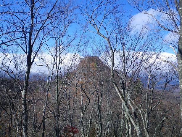 二口山塊の里山を歩く (三森山から桐ノ目山まで) ~ 2012年11月21日_f0170180_1971065.jpg