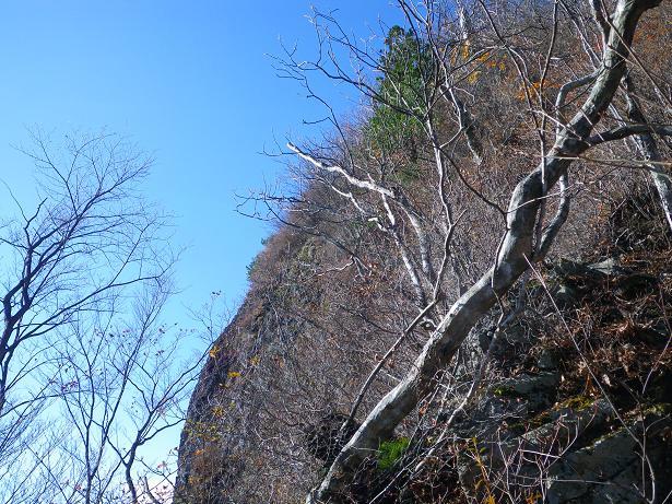 二口山塊の里山を歩く (三森山から桐ノ目山まで) ~ 2012年11月21日_f0170180_1995111.jpg
