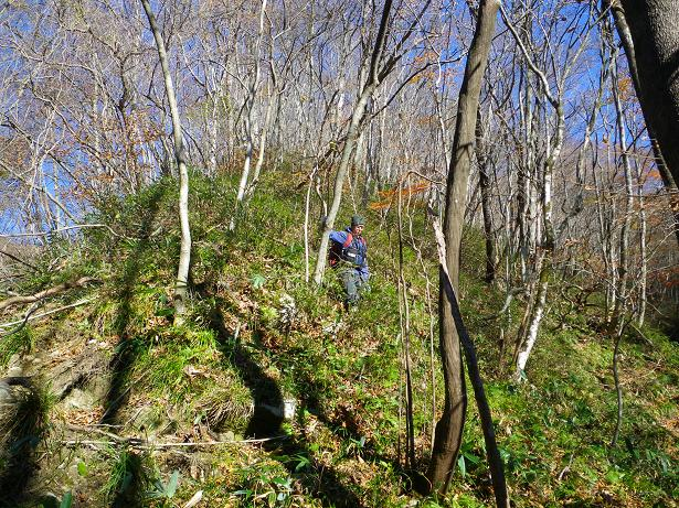 二口山塊の里山を歩く (三森山から桐ノ目山まで) ~ 2012年11月21日_f0170180_201193.jpg