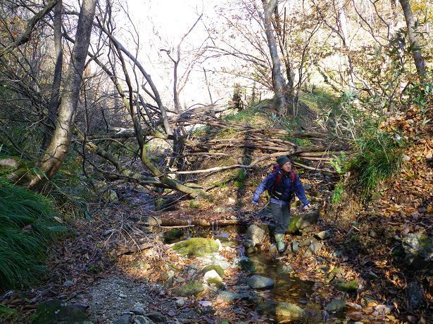 二口山塊の里山を歩く (三森山から桐ノ目山まで) ~ 2012年11月21日_f0170180_2031170.jpg