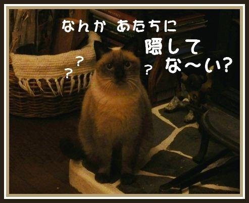 c0228386_1726095.jpg