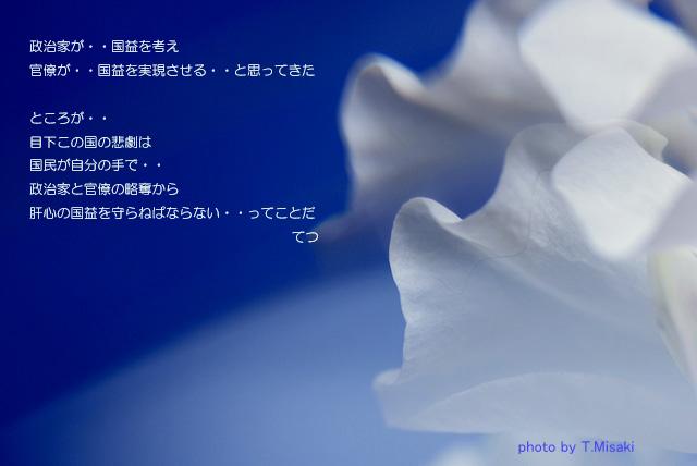 d0085887_23463464.jpg