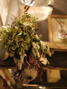 fbomb(フボー)さんの植物たち[2]_f0226293_816423.jpg