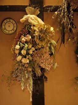 fbomb(フボー)さんの植物たち[1]_f0226293_864454.jpg