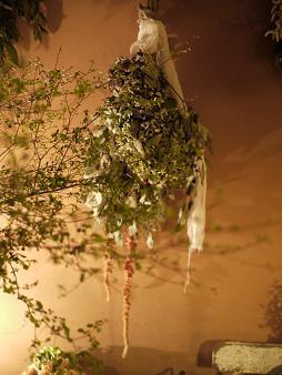 fbomb(フボー)さんの植物たち[1]_f0226293_86716.jpg