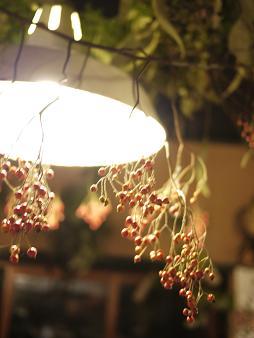 fbomb(フボー)さんの植物たち[1]_f0226293_872688.jpg