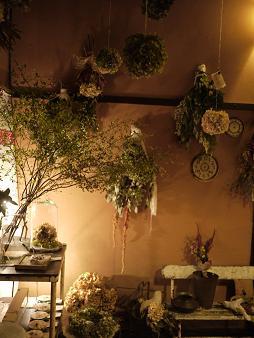 fbomb(フボー)さんの植物たち[1]_f0226293_873719.jpg