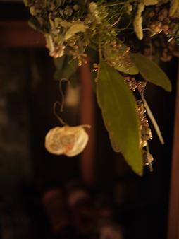 fbomb(フボー)さんの植物たち[1]_f0226293_8815.jpg
