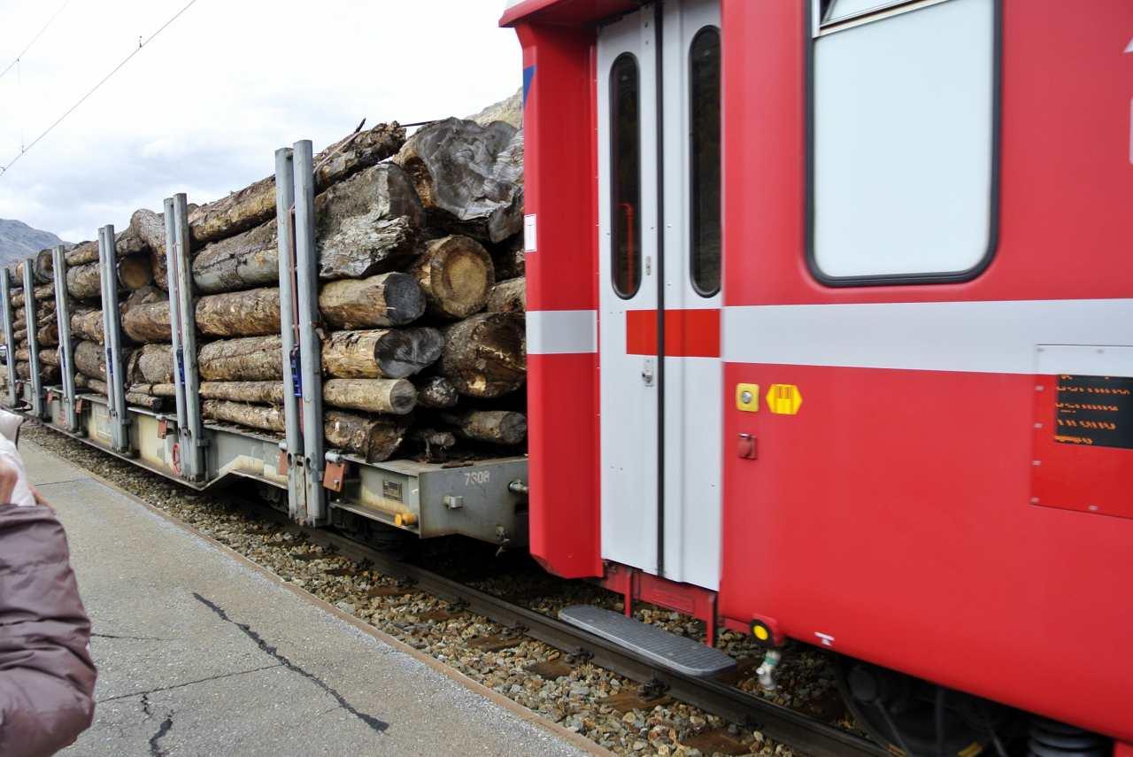 スイス紀行20 番外編5:次は列車の旅にしたい・・・_a0148206_911538.jpg