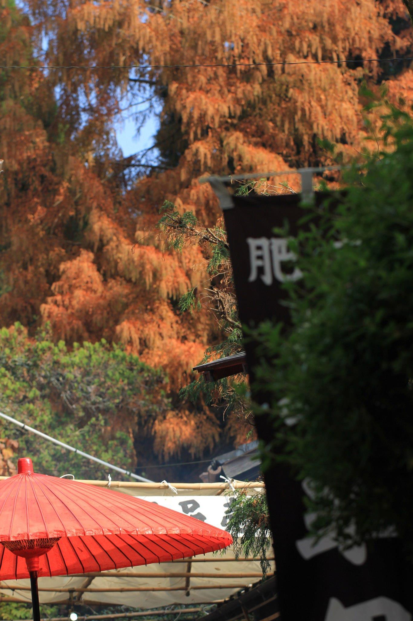 民陶火祭りは明日まで_d0047811_21532043.jpg