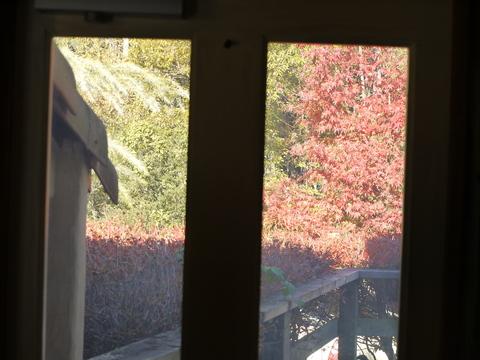 紅葉のレイクウッドリゾート。_b0116313_2326183.jpg