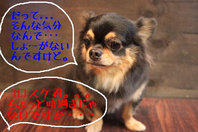 b0130018_18564761.jpg