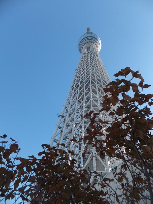 東京スカイツリー見学_b0137932_7382973.jpg