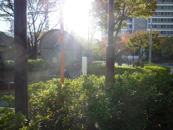 太陽にほえる_b0217741_1024410.jpg