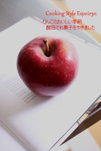 c0162653_16274620.jpg