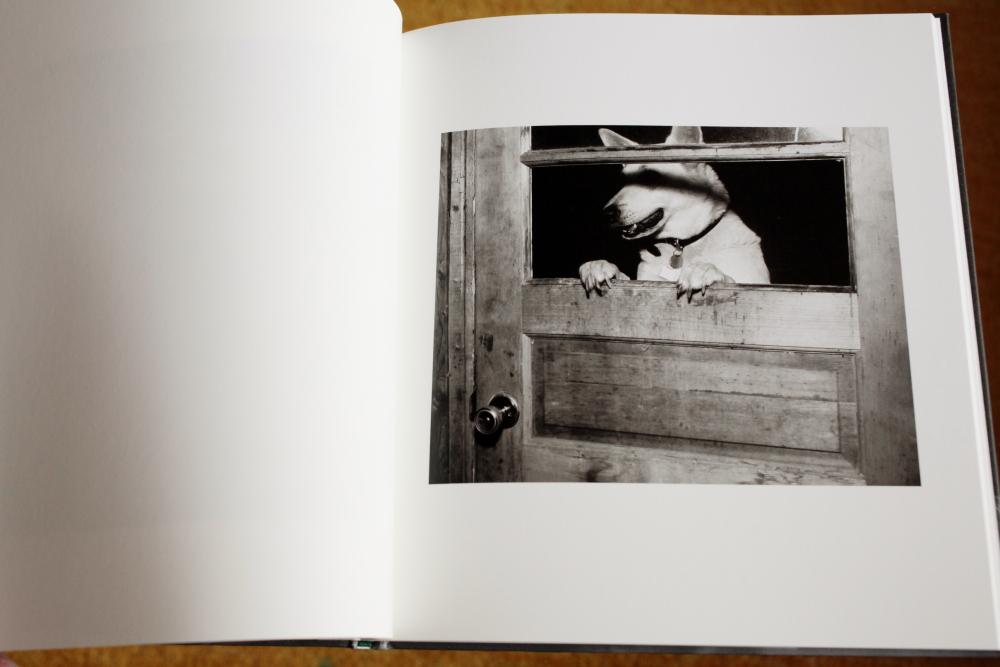 Alec Soth 「Looking for Love, 1996」_c0016177_15211336.jpg