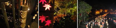 竹灯りと滝と紅葉、あと…肉まんも_d0132289_13424531.jpg