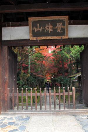 紅葉だより52 鹿王院_e0048413_22435070.jpg