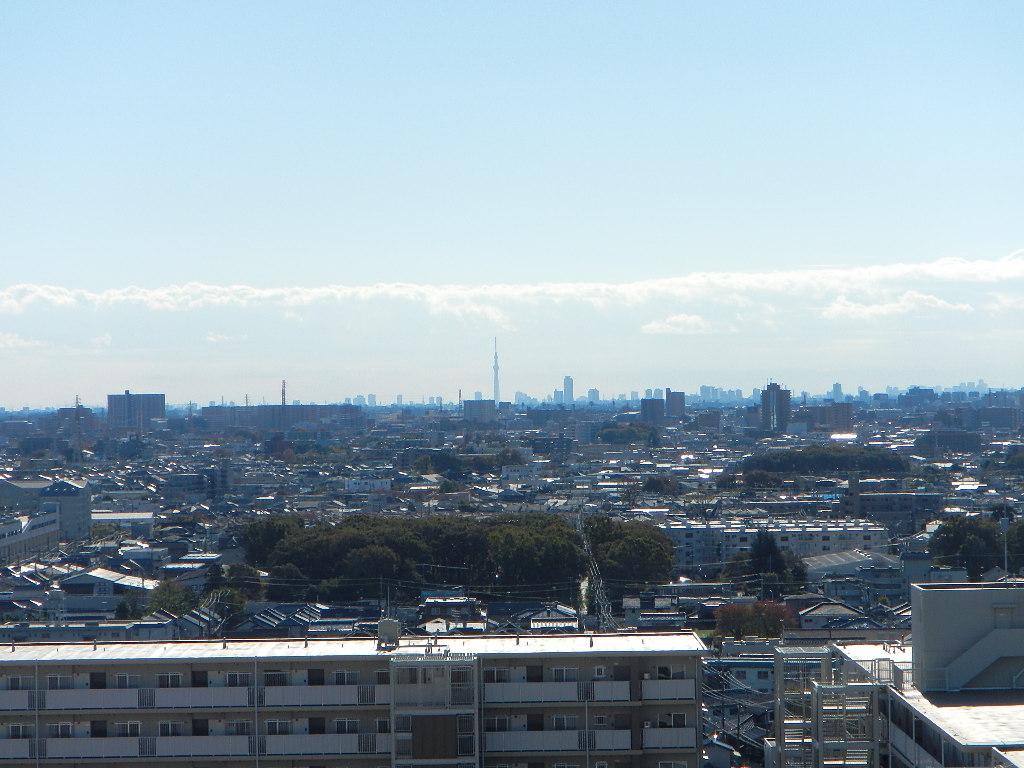 川島織物セルコン オーダーカーテン_e0243413_17363721.jpg