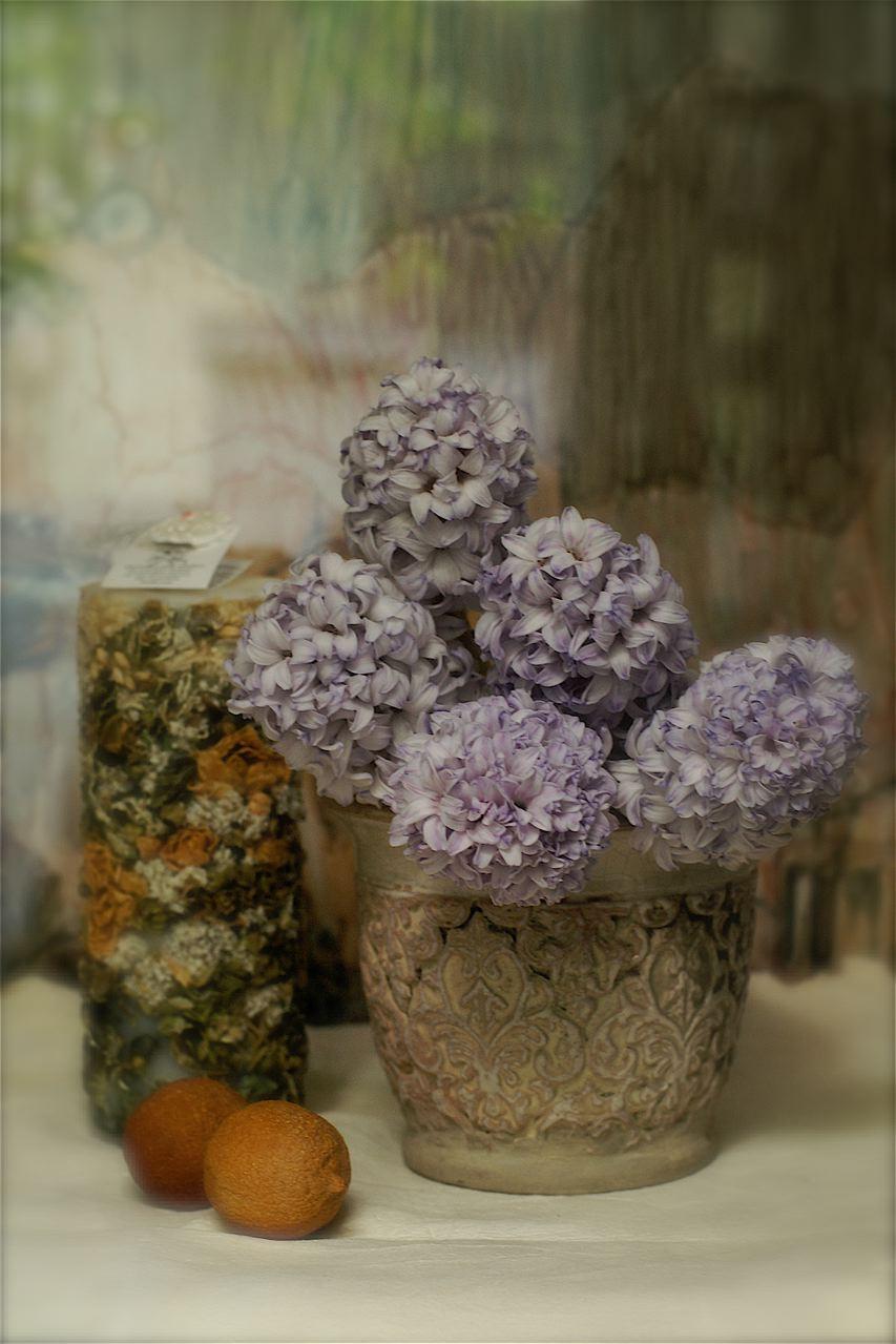 一足先に春の匂い……身も凍る「こどもの一生」_e0044929_1751682.jpg