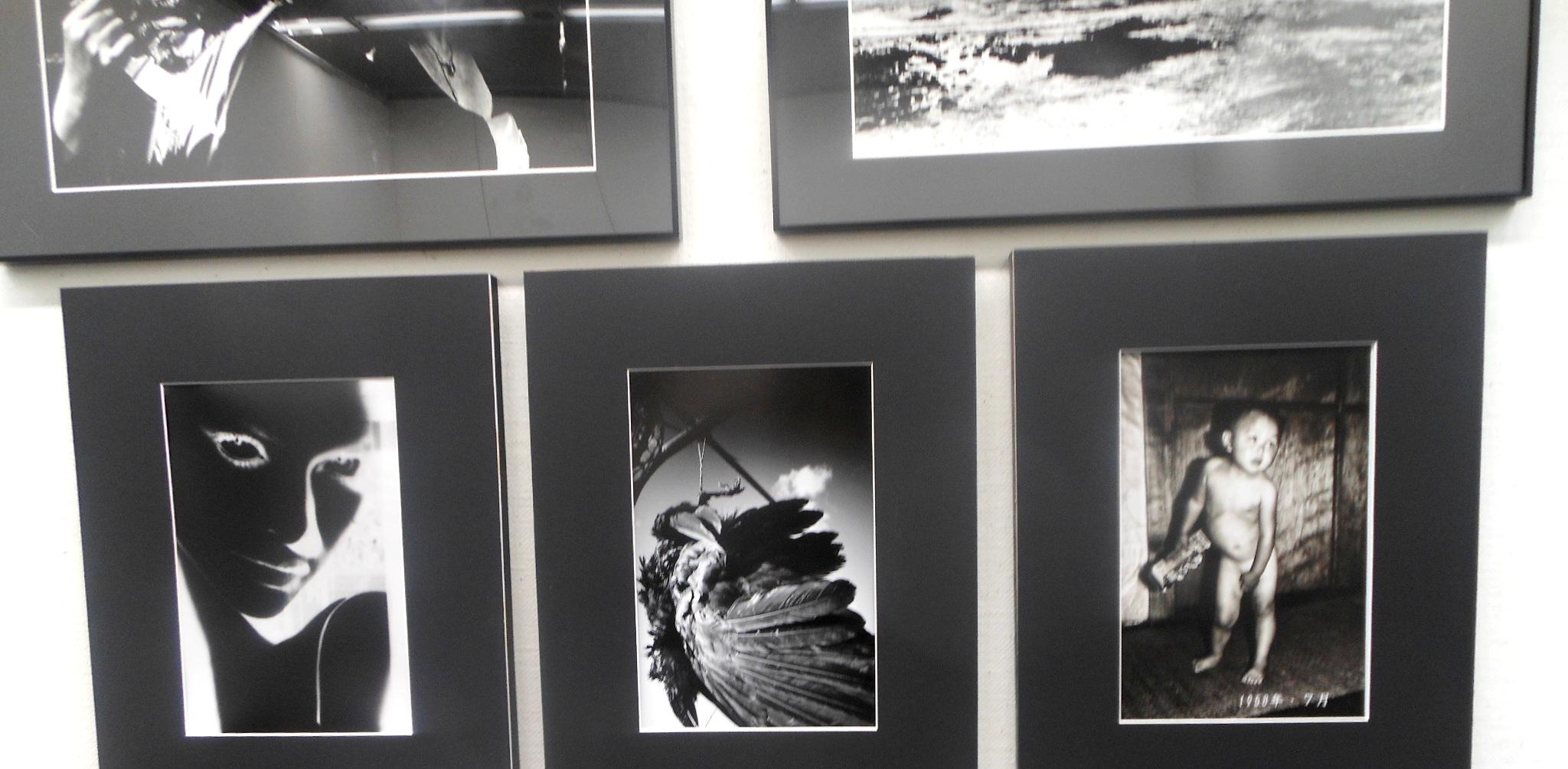 1885)②「写真クラブ「BePHaT!!」 第9回作品展 『夢 Photo 2012』」市民g. 終了11月21日(水)~11月25日(日)_f0126829_22215419.jpg