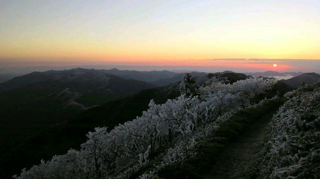 一面の霧氷に日の出がみごとです。朝の気温は−5℃。瀬戸大橋もくっきり、大峰山系もずずずぃーっと 見えました。さあ 最終日です。_c0089831_8422996.jpg