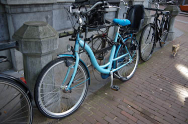 自転車のある風景ーオランダ(9月4日~)_a0074540_13212878.jpg