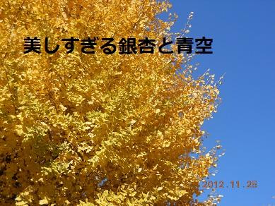 c0206342_1921977.jpg