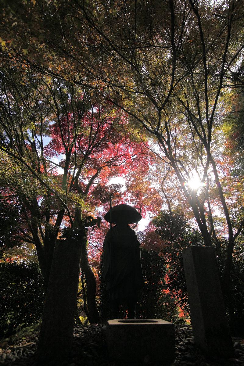 紅葉 2012  西山  金蔵寺_f0021869_052119.jpg