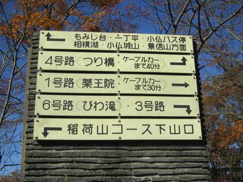 紅葉の高尾山_a0180279_19213156.jpg