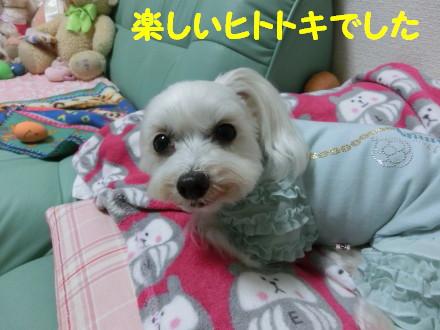 b0193480_1001888.jpg