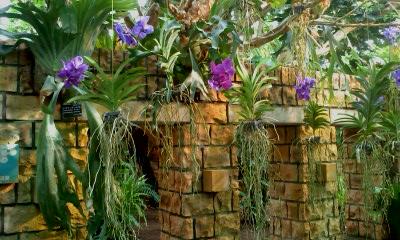 夢のような庭園_a0247891_2521771.jpg