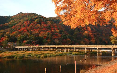 今日も、京都へ~、絵画のような、美しい、秋景色!を~。_d0060693_20201684.jpg
