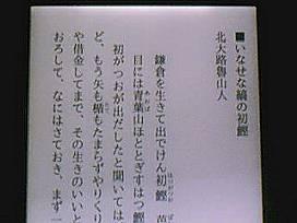 koboglo: 青キン明朝をインストール_a0051297_18372819.jpg