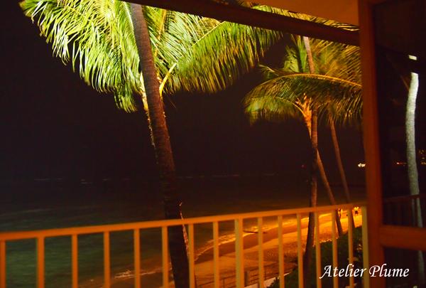 Hawaii☆ 〜波の音を聴きながら・幸せなディナー〜_e0154202_18273828.jpg