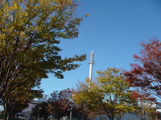 小さい秋み~つけた☆_e0235911_1141087.jpg