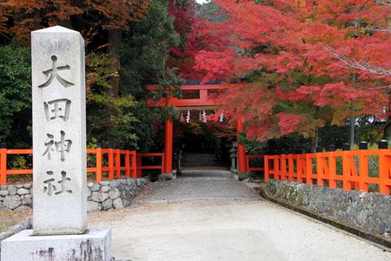 紅葉だより53 太田神社とあぜくら_e0048413_14444825.jpg