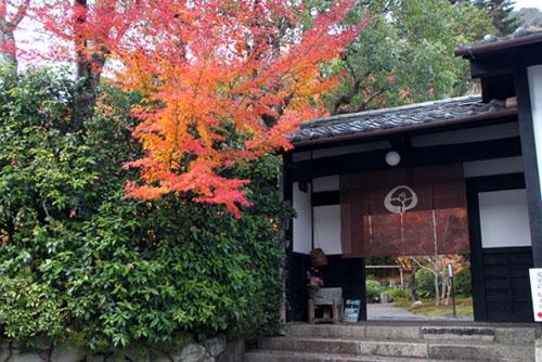 紅葉だより53 太田神社とあぜくら_e0048413_14453077.jpg