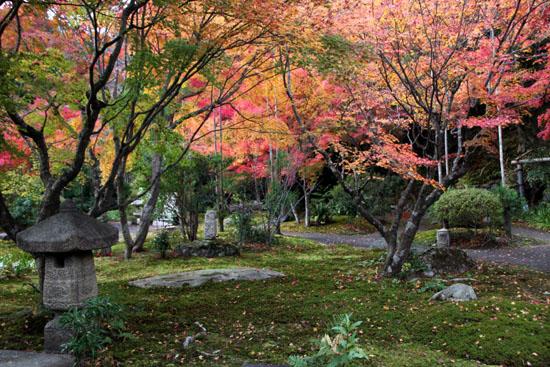 紅葉だより53 太田神社とあぜくら_e0048413_14454076.jpg