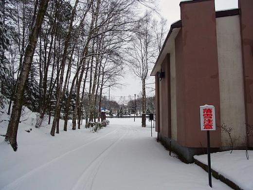 2012年11月26日(月):雪→雨[中標津町郷土館]_e0062415_19505529.jpg