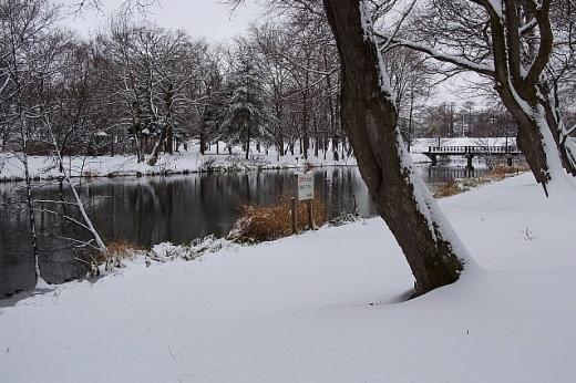 2012年11月26日(月):雪→雨[中標津町郷土館]_e0062415_1953257.jpg