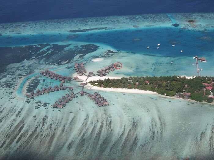 本当に夢の島だったよ!_e0182138_23315411.jpg