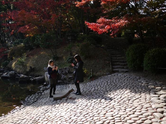 晩秋の縮景園2012_b0190540_814185.jpg